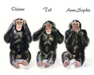 Monkey See, Monkey Do III