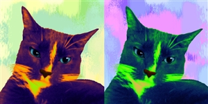 Pop Art 2-Panels from Photos