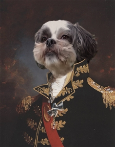Personalized Major General Masterpiece from Photo