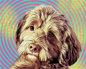 Retro Pop Art Portraits from Photos