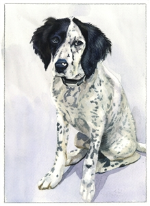 Custom Watercolor Portraits from Photos | Custom Watercolor Painting