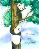 Follow the Panda